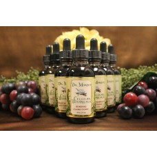 Adrenal Support (2oz Tincture)